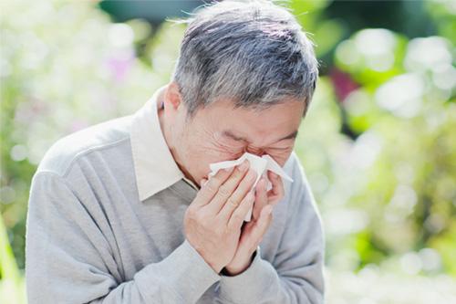 elder_sneezing_allergies